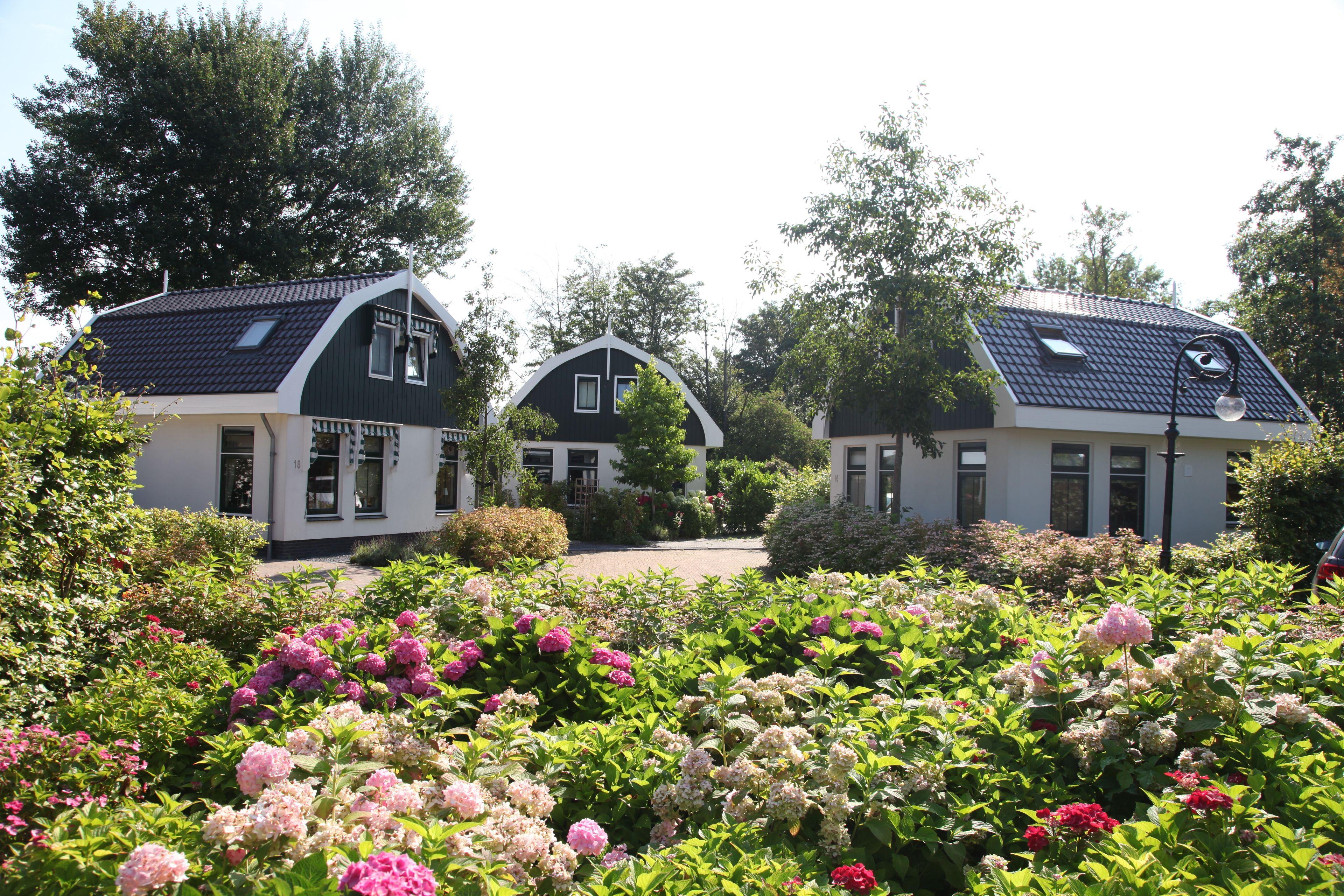 Top vakantiepark Kust Nederland 🏕️EuroParcs Koningshof