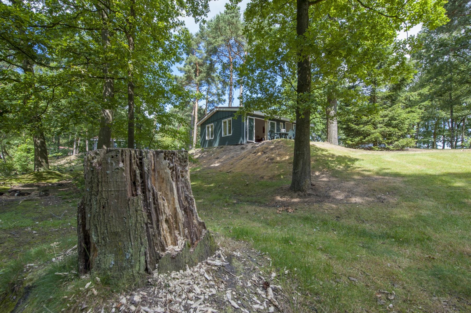 Korting bungalow De Peel 🏕️Roompot Bospark 't Wolfsven