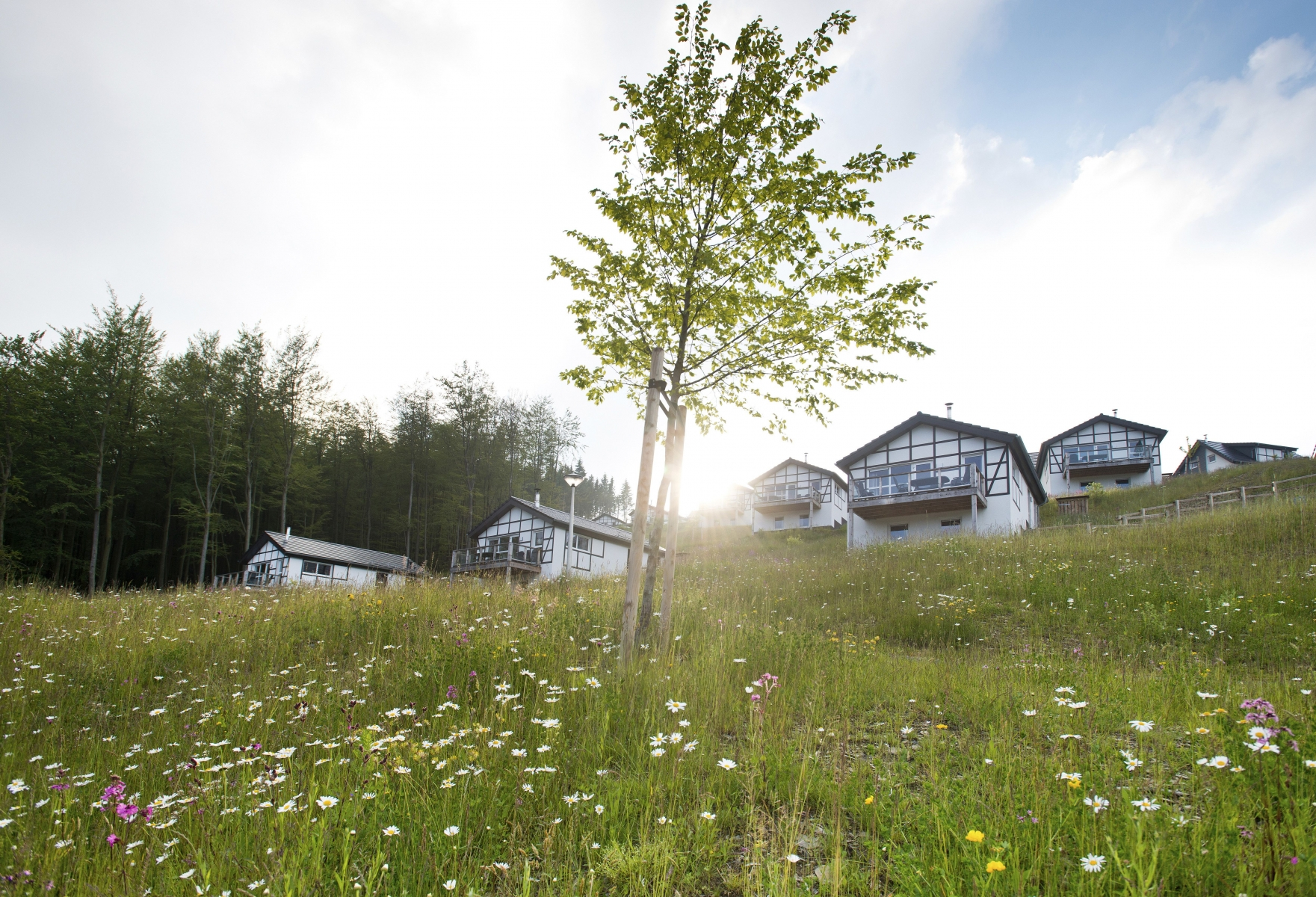 Korting bungalow Sauerland 🏕️Landal Winterberg