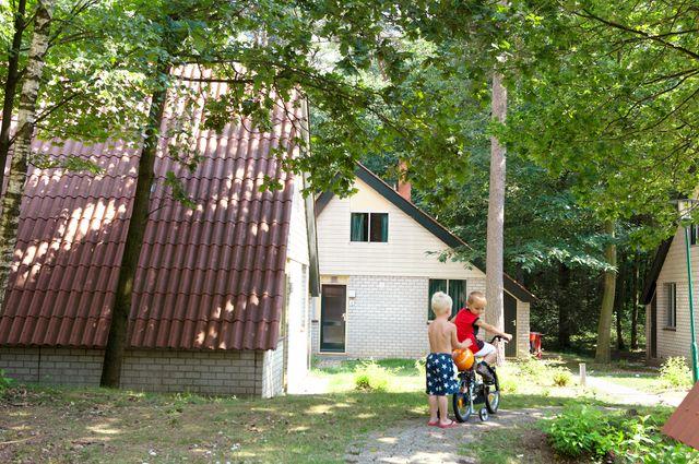Park Boschbeek